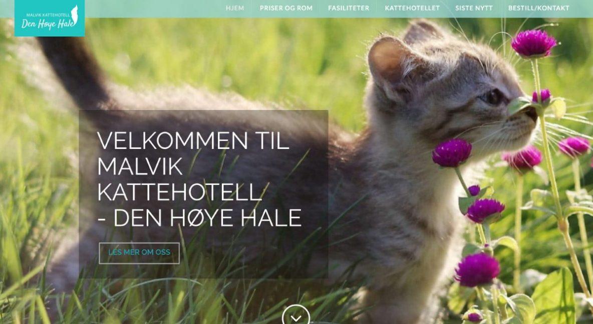 Malvik Kattehotell - Den Høye Hale